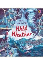 Look Inside Wild Weather